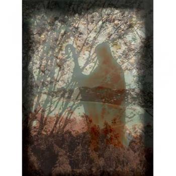 Sheperd Landscape Collage