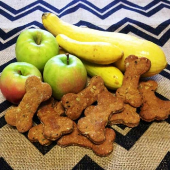 Squash Apple Dog Treats