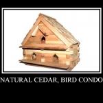 Bird Condo, Natural Cedar