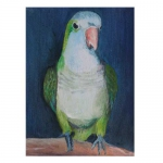 Parrot Oil Painting
